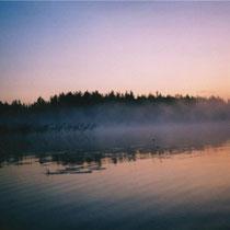 Nebel ziehen auf und verbreiten eine geheimnisvolle Stimmung.