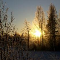 Auch der frühe Wintermorgen birgt viel Ruhe und die Chance auf einen schönen Sonnenaufgang in den Wäldern der Insel Päijätsalo.