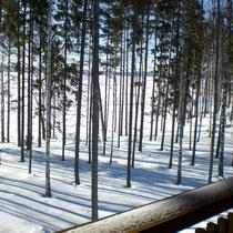 Schauen Sie mit einem Glühwein in der Hand und in Decken eingemummelt vom Balkon auf die Weite des gefrorenen Sees. Blick auf den schneebedeckten Päijänne See vor Ihrer Blockhütte.
