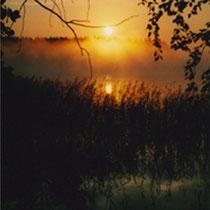 Beim Angeln während des Sonnenaufgangs die Seele baumeln lassen.