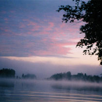"""Im Spätsommer und Herbst """" tanzen"""" die Wasserelfen auf dem ruhigen See."""