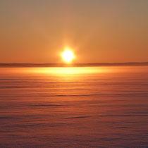 ... im polaren Winter finden ...