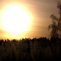 Eine besondere Faszination übt die tiefstehende Wintersonne in der polaren Umgebung über den Wäldern der Insel Päijätsalo aus.