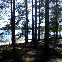 Blicken Sie aus Ihrem Zelt in die Buchten der Insel Kelvenne.