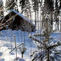 Starten Sie vom Mökki aus mit Langlaufski durch die verschneiten Wälder der Umgebung oder erleben Sie die einmalige Landschaft des gefrorenen großen Sees.