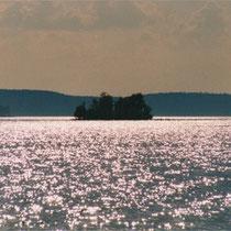 Abendliches Glitzern und Funkeln am See.