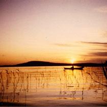 """Der frühe Vogel fängt den...Genießen Sie entspanntes Angeln im Boot beim Sonnenaufgang in den Schilfzonen der 3km breiten Bucht vor dem Haus. Im Hintergrund der 1,5 km vom Haus entfernte """"Berg"""" mit Aussichtsturm der Insel Päijätsalo bei Sonnenaufgang"""