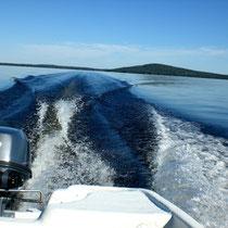 """Geben Sie mal richtig Gas und genießen Sie dieses traumhafte Panorama. Sie werden nur wenige andere Boote antreffen und meist """"alleine"""" auf dem großen See sein. Im Hintergrund die Insel Päijätsalo mit Ihrem Ferienhaus und dem """"Berg"""" mit dem Aussichtsturm."""