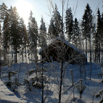 """Jetzt nichts wie raus! Sonniger polarer Wintertag am Mökki. Schneebehaubte Bäume. Ein gefrorener See in der Sonne, der zu Nordic Skiing oder zu Spaziergängen einlädt. Langlaufski u. Schneeschuhe s. """"All inclusive"""".  Sunny arctic winter´s day."""