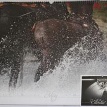 Dieses Foto vom Marathon des CHIO, wurde für den Kalender 2012 der Firma Equistro ausgewählt.