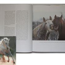 """Der norwegische Verlag """"Cappelen Damm"""" hat für das Buch """"Hesten"""" eine humorvolle Darstellung von Pferden gesucht. Ich habe mich sehr gefreut, dass mein Motiv diese Anforderung erfüllt hat!"""