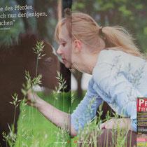 """In dem Magazin """"Pferde fit und vital"""" erschien mein Foto von Nadine und Ihrem Minishetty Fohlen auf einer Doppelseite."""