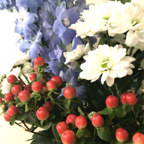 ② 今月のお花 1