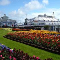 Eastbourne-Pier and Carpet Gardens