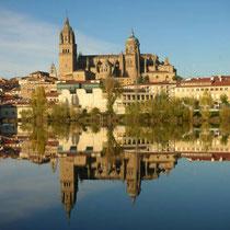 Salamanca-Vista panorámica y Catedral