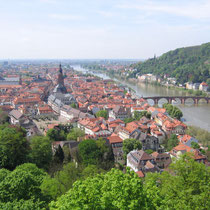 Heidelberg-Old part of thecity from Scheffel Terrace