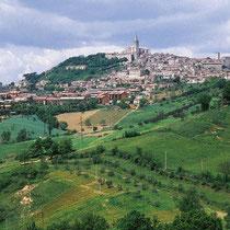 Todi-Le strade del vino