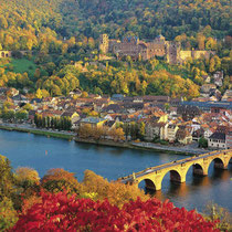 Heidelberg-Panoramic view in fall