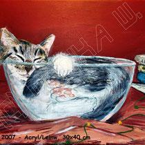 2007 -  Acryl/Leinw.40 x 30 cm - nicht mehr verfügbar