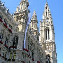 Wiener Rathaus - © mw