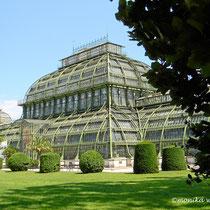 Schönbrunner Park - Palmenhaus - © mw