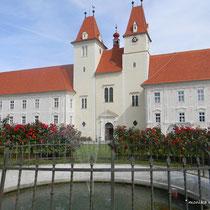 Blick zur Stftskirche