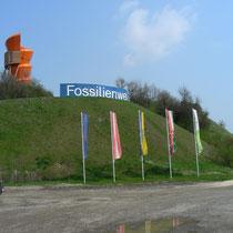 Fossilienwelt, Informationen unter www.fossilienwelt.at