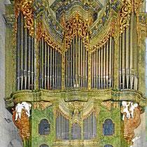 Orgel von Ignaz Kober (1804) hat zwei Manuale, 55 Register und 2959 Pfeifen.Franz Schubert  und  Anton Bruckner haben auf dieser Orgel gespielt