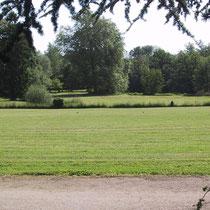 Le parc depuis la mison