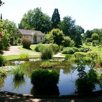 Motiv 9 - Botanischer Garten, Freiburg