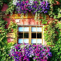 Motiv 6 - Küchenfenster