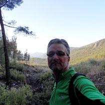 Aufstieg im Kiefernwald