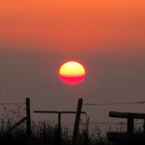 Die Sonne erwacht