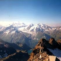 Fern - Mont Blanc & Combin