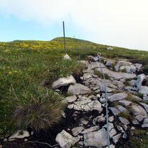 Tour d'Ai-Gipfel - 2331 M