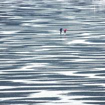 Motiv 7 - Eisfläche des zugefrorenen Titisees