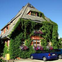 Motiv 13 - Haus am Tannenhain