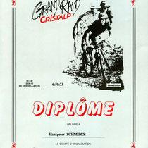 Diplôme 1994