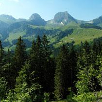 Panorama - Von Gurnigel