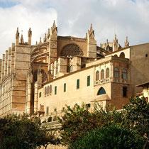 Motiv 5 - Catedral La Seu - Palma de Mallorca