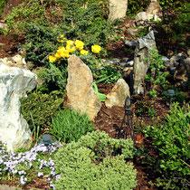 Motiv 12 - Steingarten