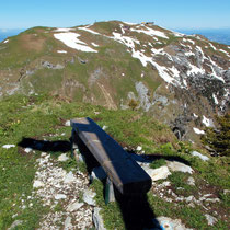 Gipfelzone des Fronalpstock