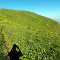 Gantrisch-Gipfel - 2175 M