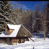 Motiv 12 - Mühle im Reichenbachtal