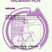 Diplom 1994
