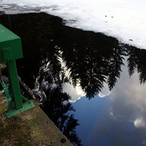 Motiv 13 - Eisweiher, Titisee