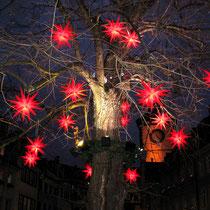 Motiv 4 - Weihnachtsbaum - Freiburg