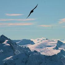 Freiheit - Über den Bergen