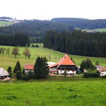 Motiv 11 - Fallerhof bei Gütenbach