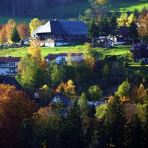 Motiv 2 - Bühlberg in Titisee